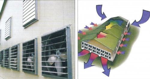 Giải pháp thông gió làm mát thông minh trong mùa hè cho nhà xưởng