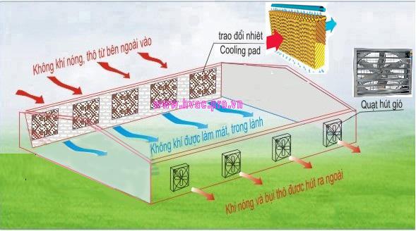 Công nghệ làm mát thông minh và tiết kiệm năng lượng nhờ tấm làm mát